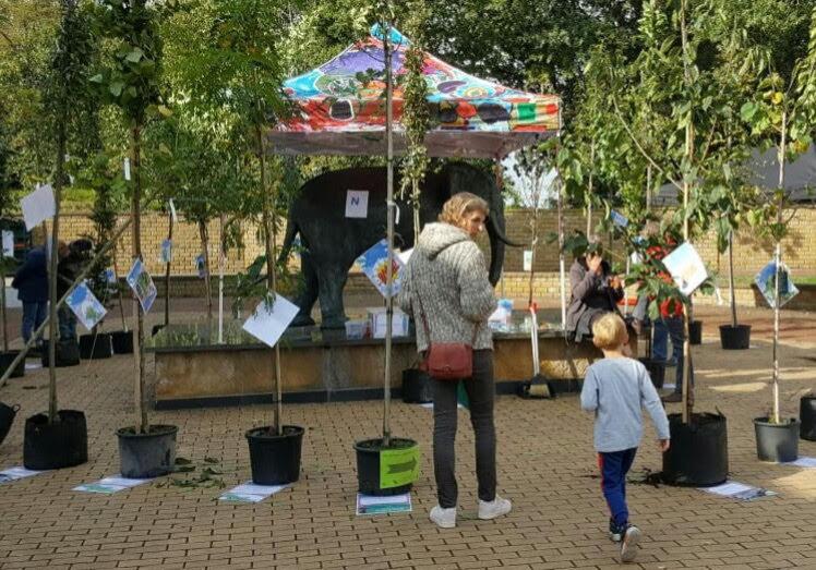boomcirkel groene loper hof van twente bij beurs stappen zetten bij Dieka