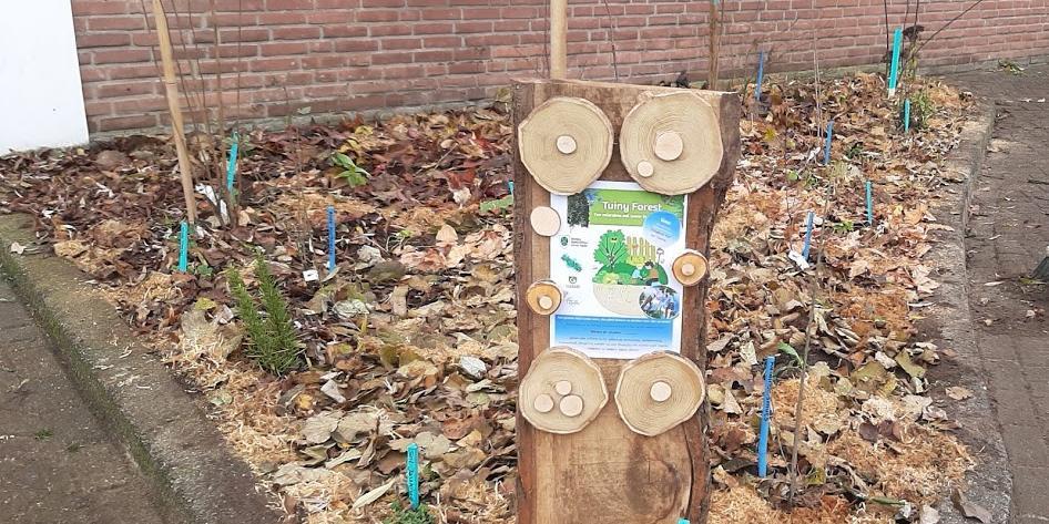 tuiny forest in Goor geplant door de stadslandbouw